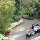 Botanical Center Patio